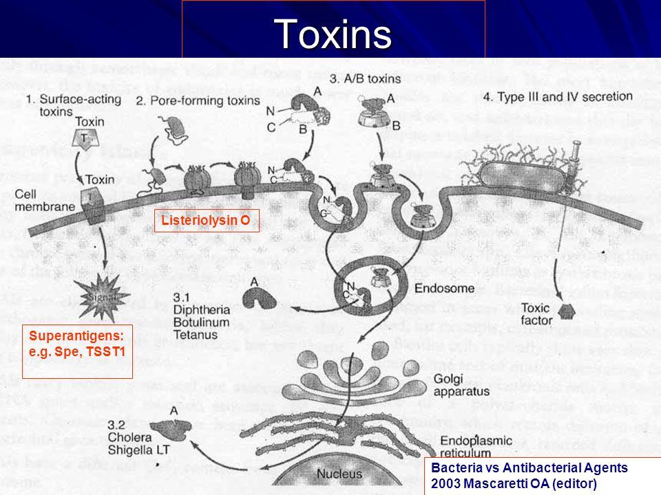 Toxins Bacteria vs Antibacterial Agents 2003 Mascaretti OA (editor) Superantigens: e.g. Spe, TSST1 Listeriolysin O