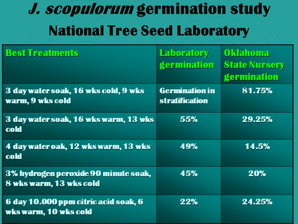 J. scopulorum germination study National Tree Seed Laboratory Best Treatments Laboratory germination Oklahoma State Nursery germination 3 day water so