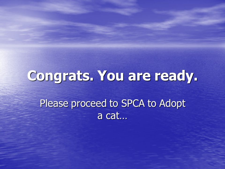 Congrats. You are ready. Please proceed to SPCA to Adopt a cat…