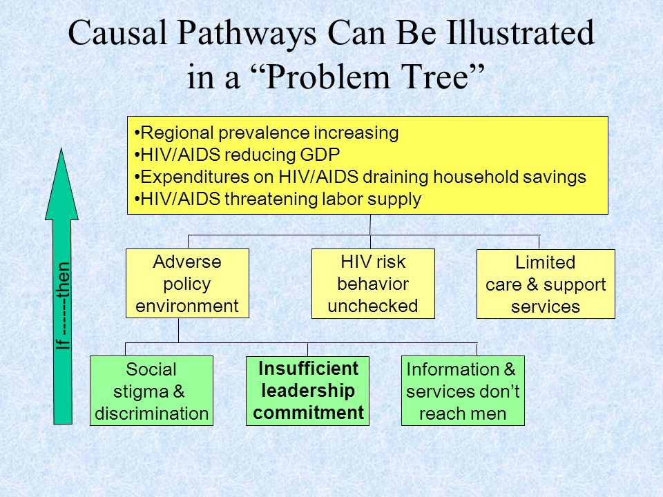 Causal Pathways Can Be Illustrated in a Problem Tree Social stigma & discrimination Information & services dont reach men Adverse policy environment HIV risk behavior unchecked Limited care & support services Regional prevalence increasing HIV/AIDS reducing GDP Expenditures on HIV/AIDS draining household savings HIV/AIDS threatening labor supply If then Insufficient leadership commitment