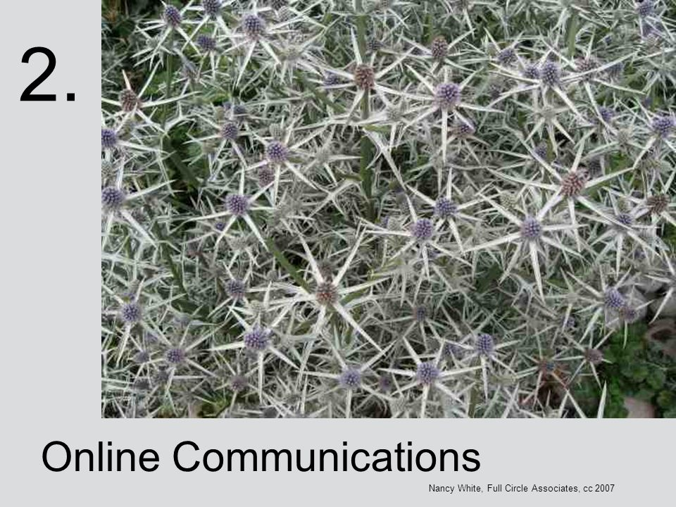 2. Online Communications Nancy White, Full Circle Associates, cc 2007