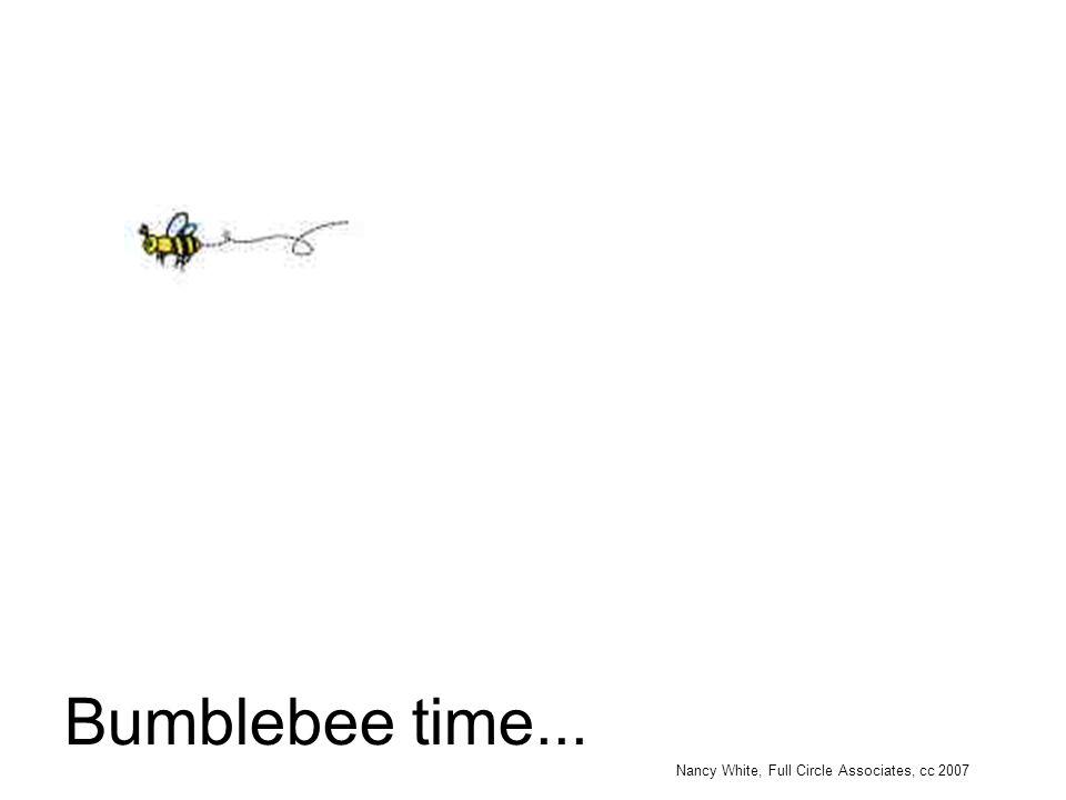 Bumblebee time...