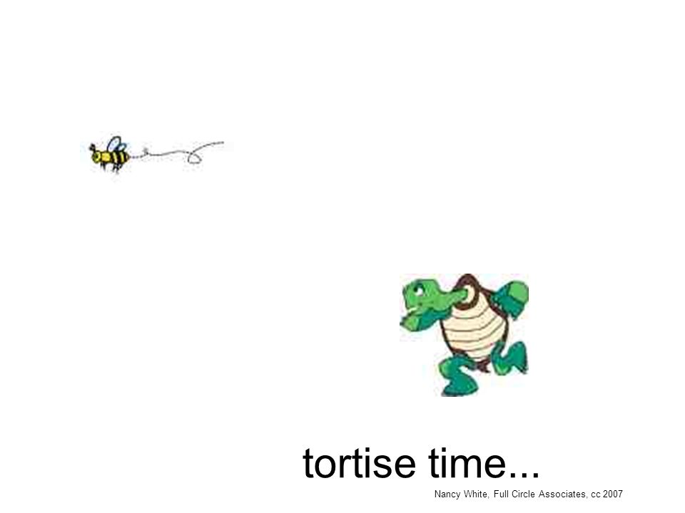 Nancy White, Full Circle Associates, cc 2007 tortise time...