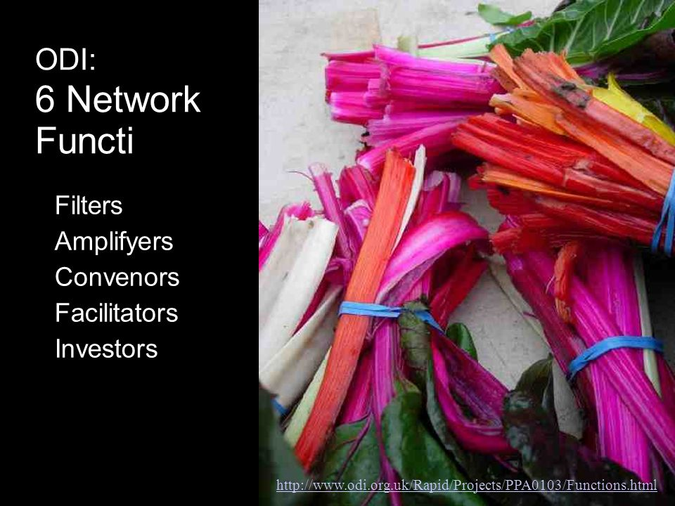 ODI: 6 Network Functions Filters Amplifyers Convenors Facilitators Investors Community builders http://www.odi.org.uk/Rapid/Projects/PPA0103/Functions