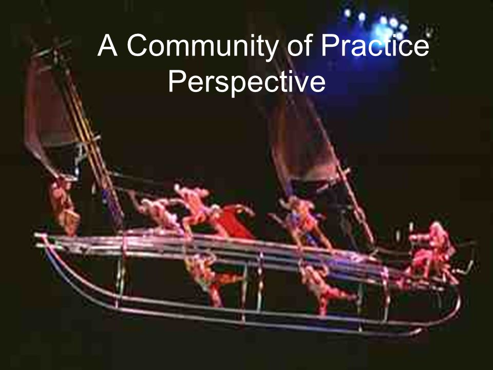 A Community of Practice Perspective