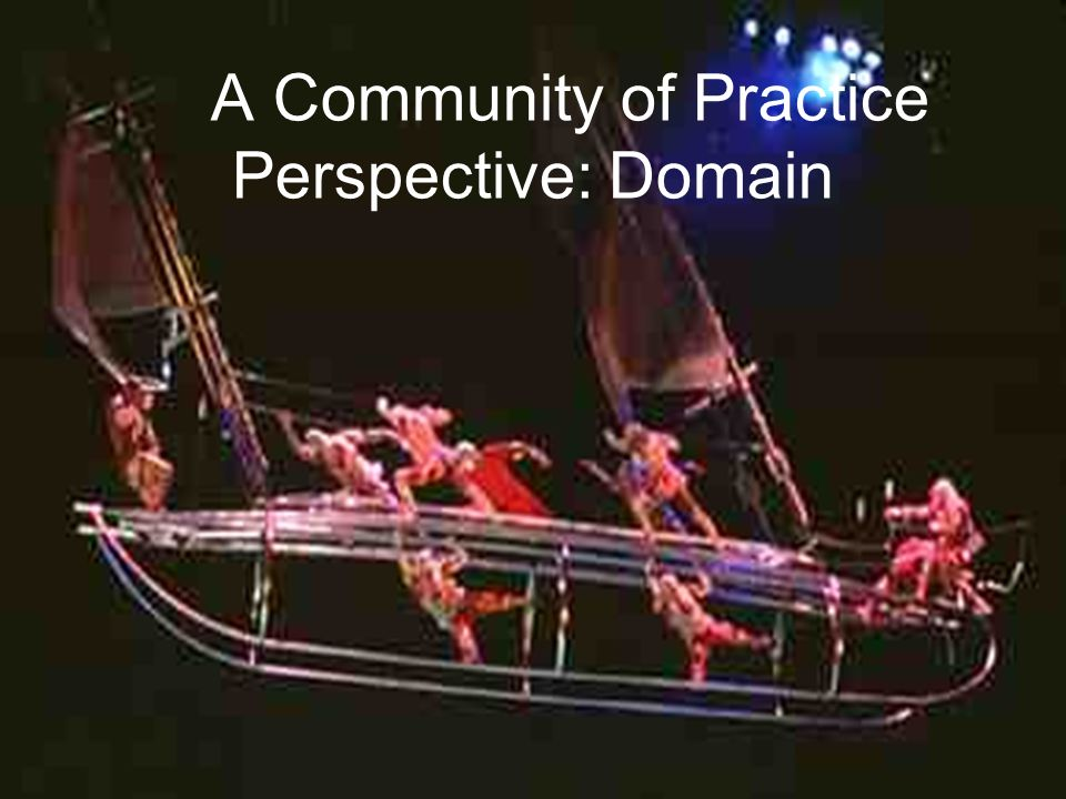 A Community of Practice Perspective: Domain