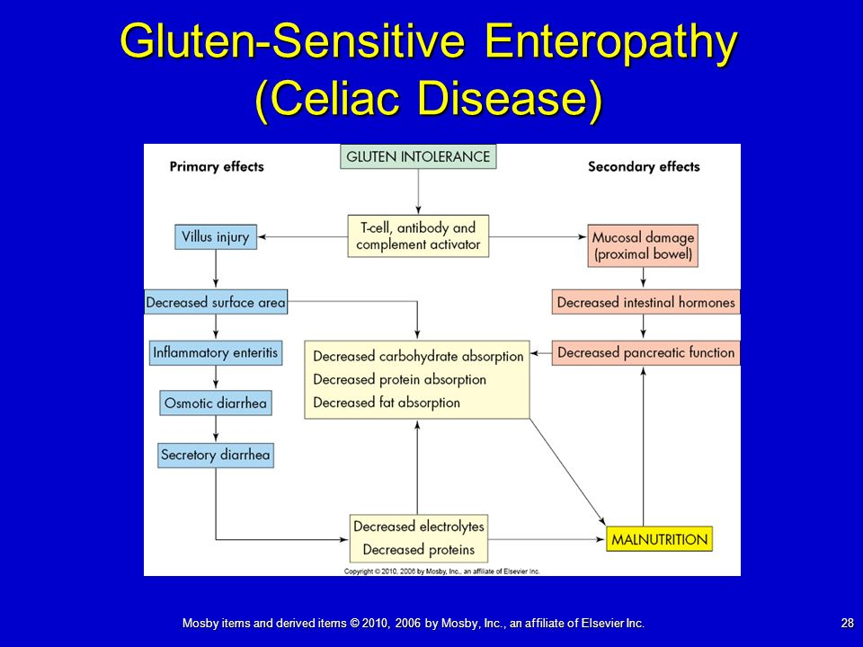 Mosby items and derived items © 2010, 2006 by Mosby, Inc., an affiliate of Elsevier Inc. 28 Gluten-Sensitive Enteropathy (Celiac Disease)