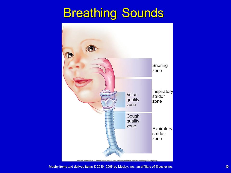 Mosby items and derived items © 2010, 2006 by Mosby, Inc., an affiliate of Elsevier Inc. 10 Breathing Sounds