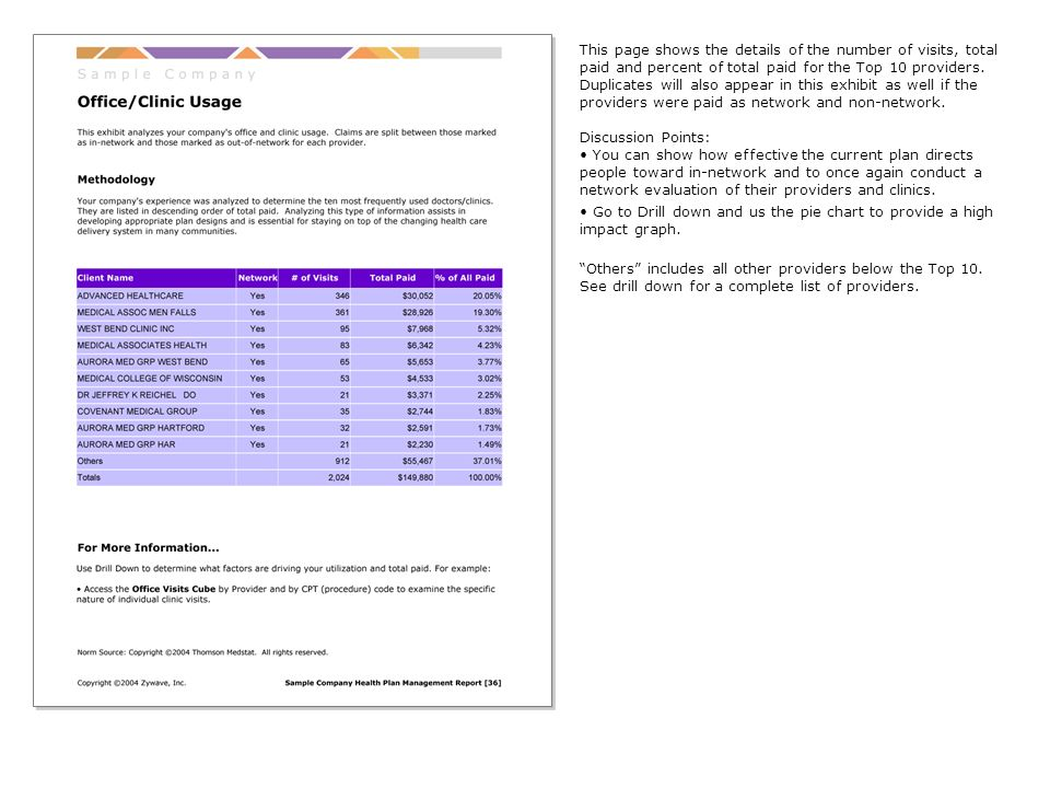 This page shows the details of the number of visits, total paid and percent of total paid for the Top 10 providers.