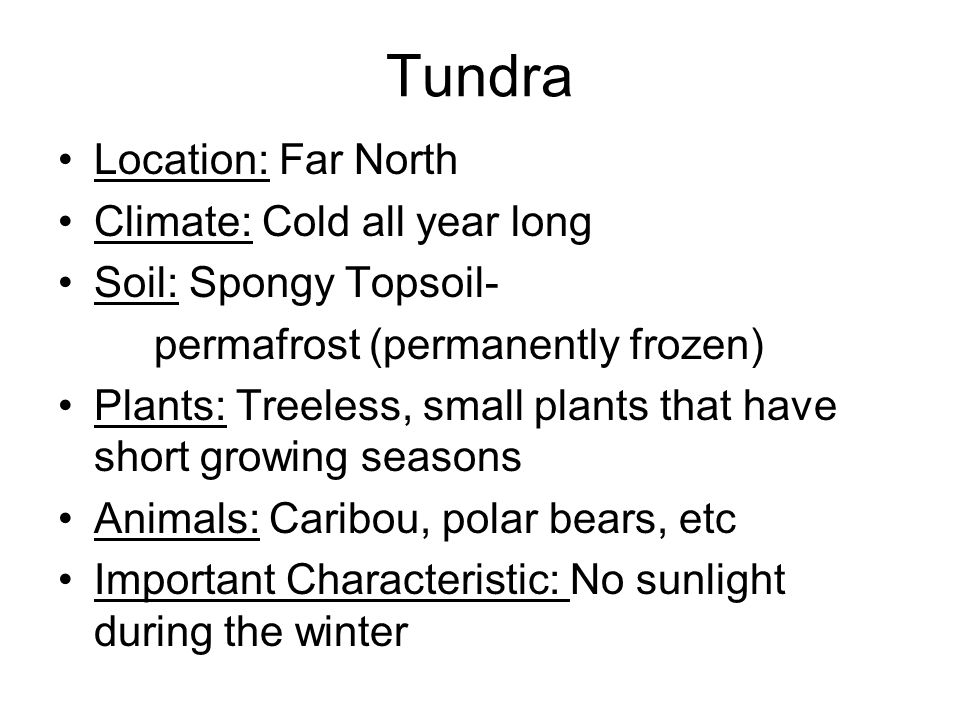 Tundra Location: Far North Climate: Cold all year long Soil: Spongy Topsoil- permafrost (permanently frozen) Plants: Treeless, small plants that have