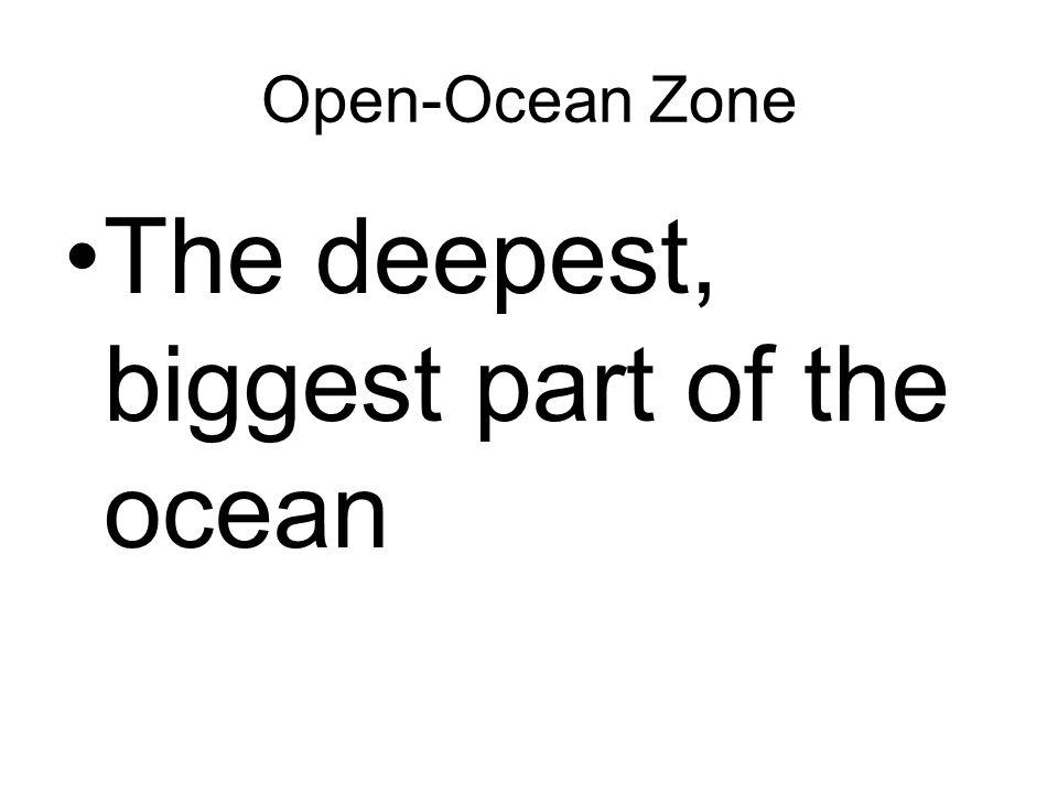 Open-Ocean Zone The deepest, biggest part of the ocean