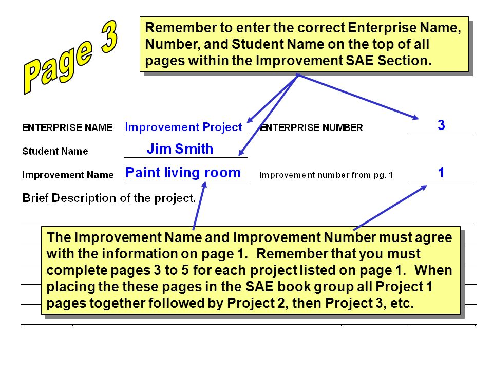 Remember to enter the correct Enterprise Name, Number, and Student Name on the top of all pages within the Improvement SAE Section. The Improvement Na