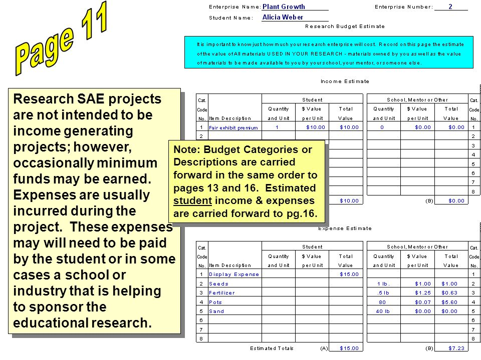 Research SAE projects are not intended to be income generating projects; however, occasionally minimum funds may be earned.