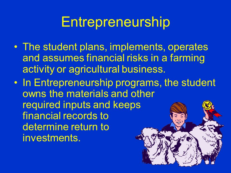 Types of SAE in PA Entrepreneurship Placement Conservation Improvement Practicum Skills Research