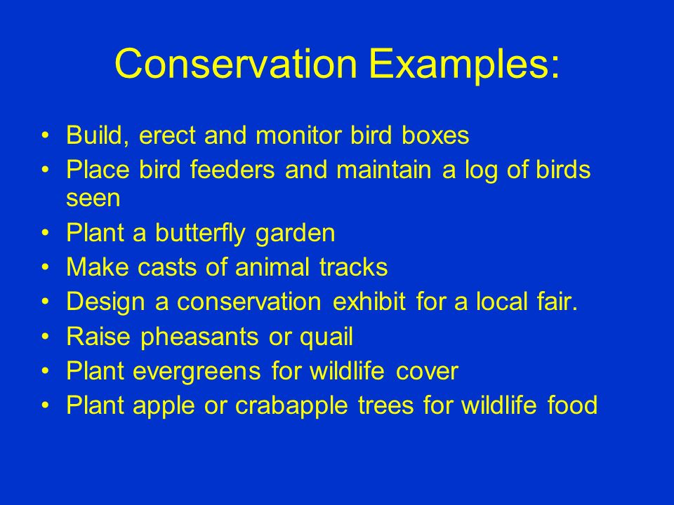 Conservation The student studies wildlife and the environment and conducts activities to improve the environment and provide habitat for wildlife. Con