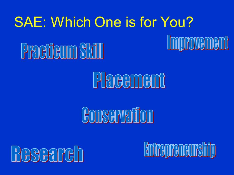 SAE and You While a SAE program may contain just one type of activity, the goal should be to show growth each year, either by improving or expanding y