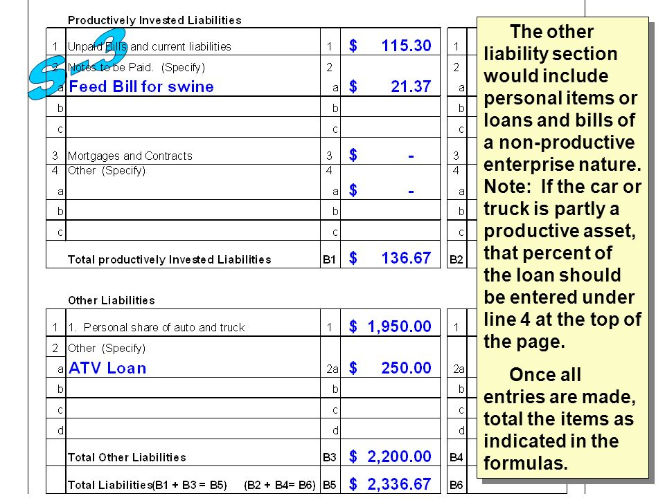 The other liability section would include personal items or loans and bills of a non-productive enterprise nature.