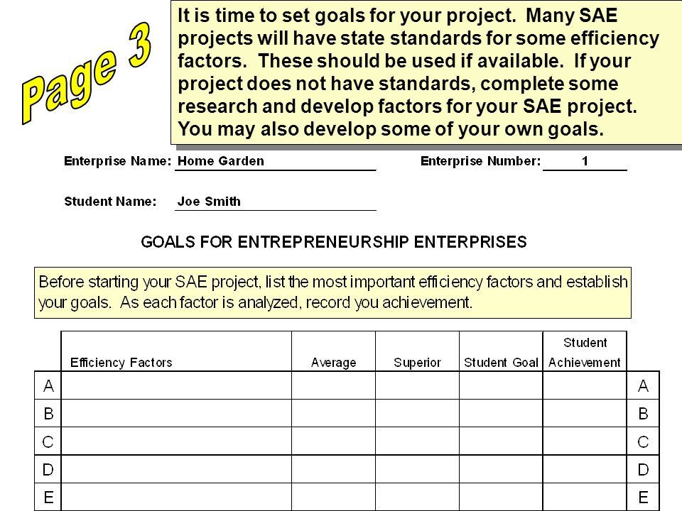 It is time to set goals for your project.
