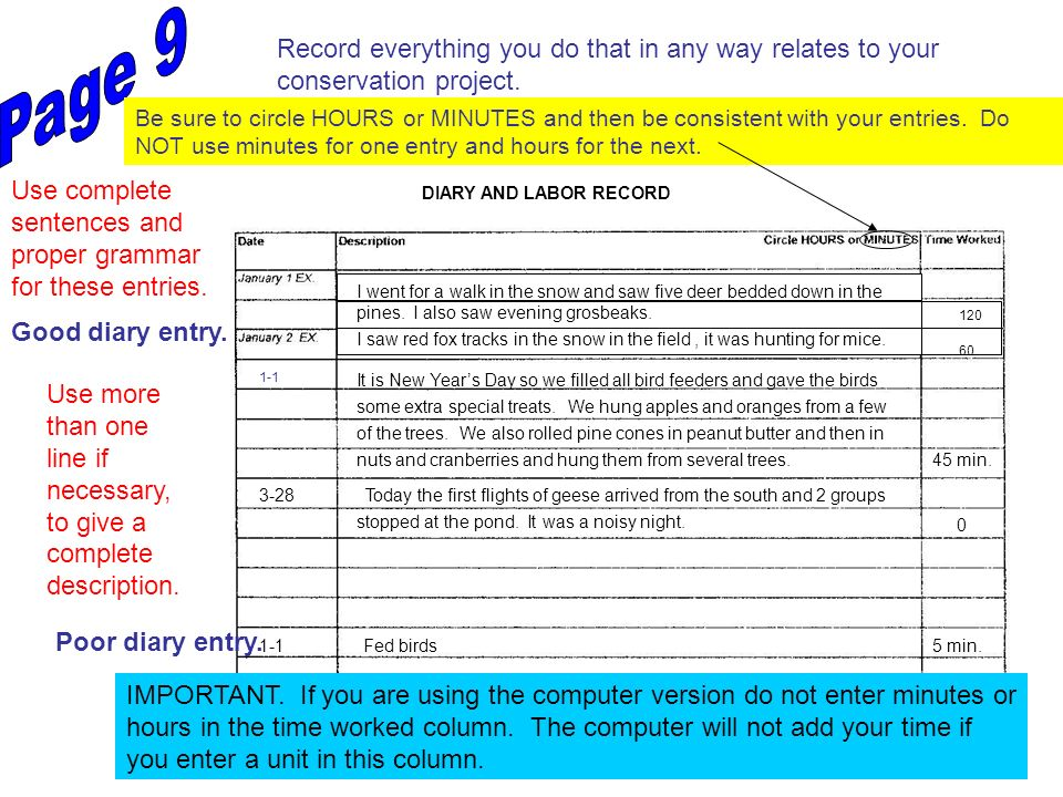 DIARY AND LABOR RECORD Record everything you do that in any way relates to your conservation project. Use complete sentences and proper grammar for th