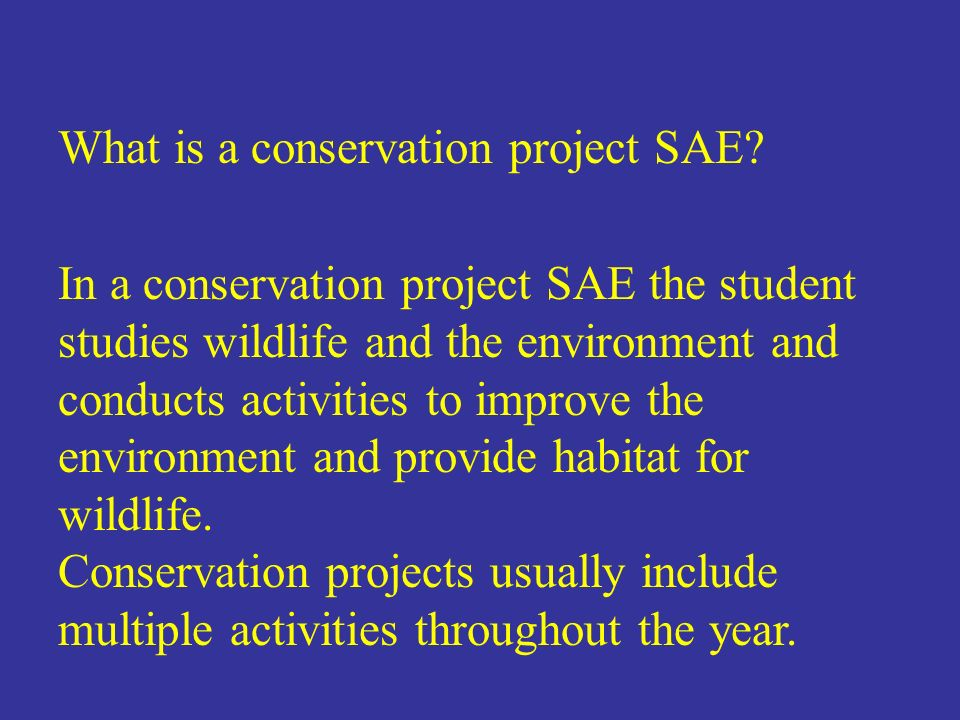 What is a conservation project SAE? In a conservation project SAE the student studies wildlife and the environment and conducts activities to improve