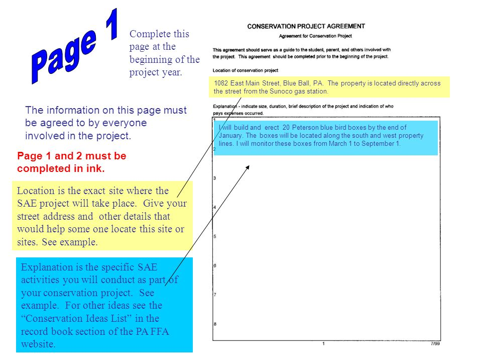 terxt The Enterprise Name and Number should be the same on each page and should agree with the Common Pages.