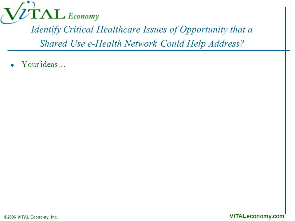 ViTALeconomy.com ©2006 ViTAL Economy, Inc. Identify Critical Healthcare Issues of Opportunity that a Shared Use e-Health Network Could Help Address? Y
