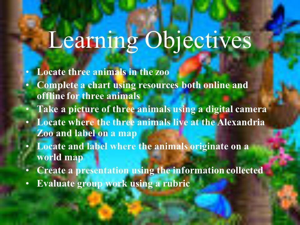 Learning Objectives Locate three animals in the zoo Complete a chart using resources both online and offline for three animals Take a picture of three