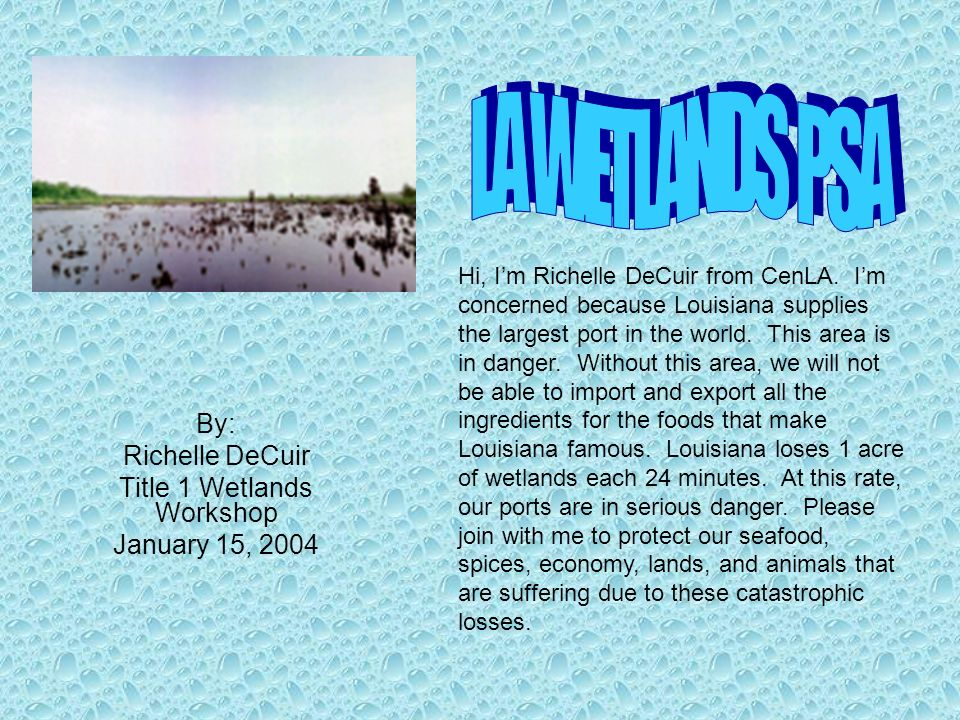 By: Richelle DeCuir Title 1 Wetlands Workshop January 15, 2004 Hi, Im Richelle DeCuir from CenLA. Im concerned because Louisiana supplies the largest