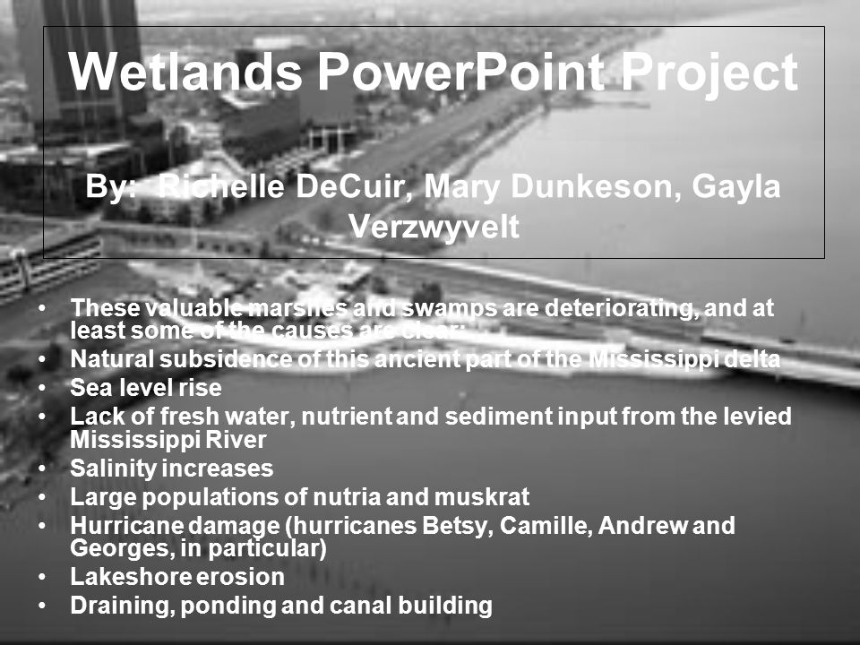 Wetlands PowerPoint Project By: Richelle DeCuir, Mary Dunkeson, Gayla Verzwyvelt These valuable marshes and swamps are deteriorating, and at least som