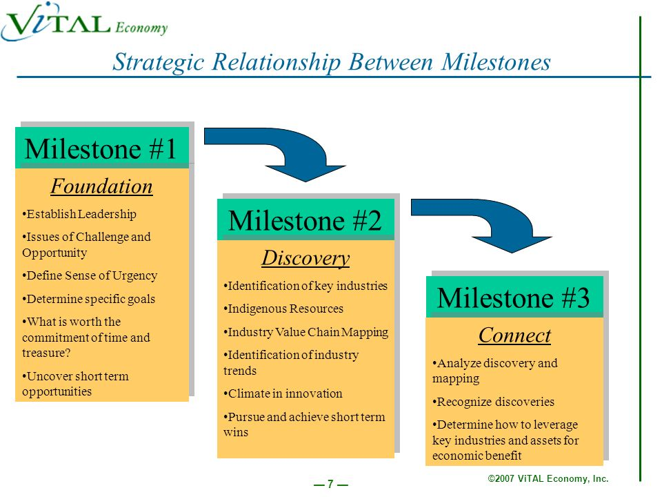 ©2007 ViTAL Economy, Inc. 7 Strategic Relationship Between Milestones Milestone #1 Foundation Establish Leadership Issues of Challenge and Opportunity