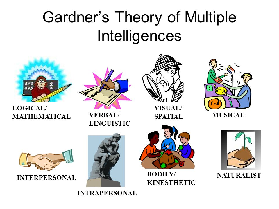 Gardners Theory of Multiple Intelligences LOGICAL/ MATHEMATICAL VERBAL/ LINGUISTIC VISUAL/ SPATIAL MUSICAL BODILY/ KINESTHETIC NATURALIST INTERPERSONAL INTRAPERSONAL