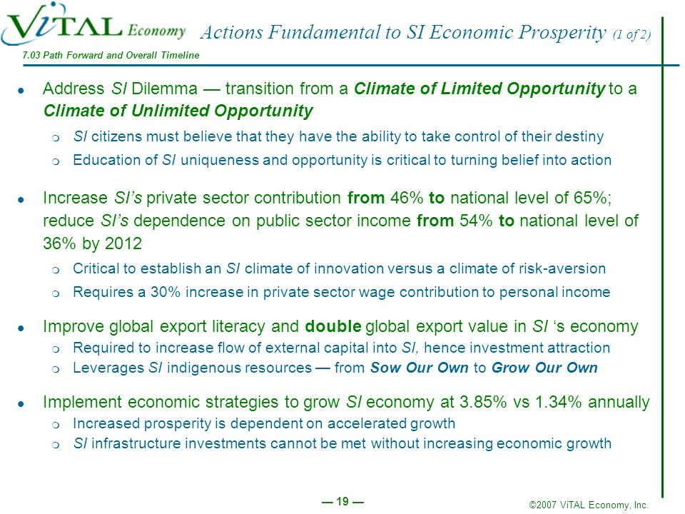 ©2007 ViTAL Economy, Inc. 19 Actions Fundamental to SI Economic Prosperity (1 of 2) Address SI Dilemma transition from a Climate of Limited Opportunit