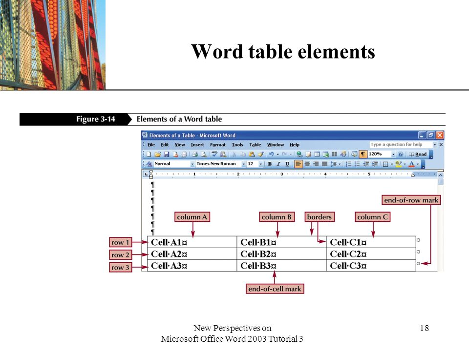 XP New Perspectives on Microsoft Office Word 2003 Tutorial 3 18 Word table elements