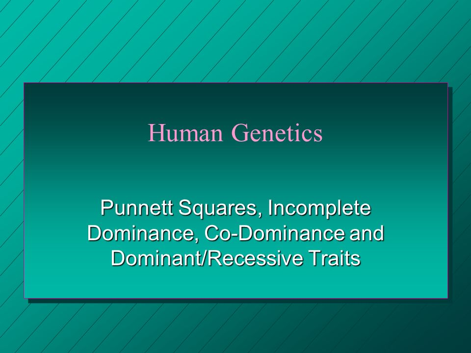 Human Genetics Punnett Squares, Incomplete Dominance, Co-Dominance and Dominant/Recessive Traits
