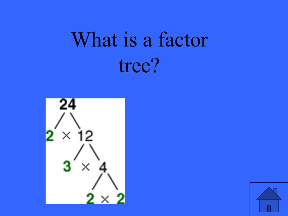 What is a factor tree?
