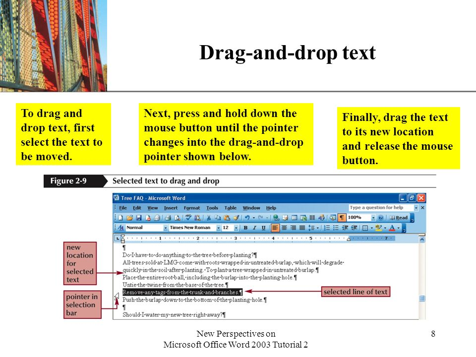 XP New Perspectives on Microsoft Office Word 2003 Tutorial 2 19 Copy formatting with the Format Painter The Format Painter copies formatting from one paragraph to another in three steps: –Select the entire formatted paragraph –Click the Format Painter button (double-click to apply the format to multiple items), and then use the mouse pointer to select the item(s) you want to format –Click in the paragraph to be formatted.