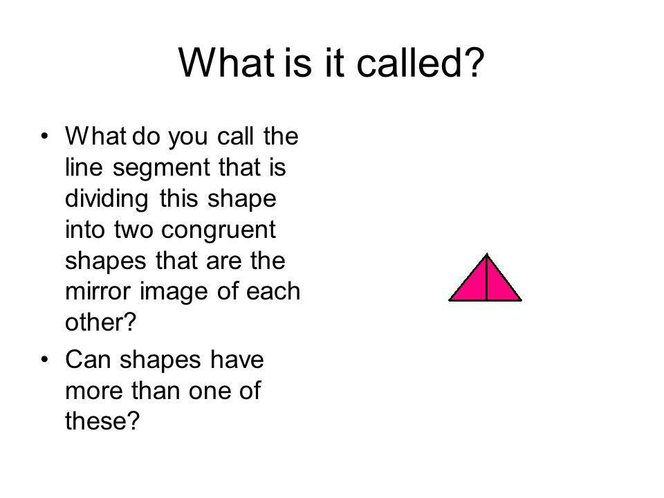 What is it called? What do you call the line segment that is dividing this shape into two congruent shapes that are the mirror image of each other? Ca