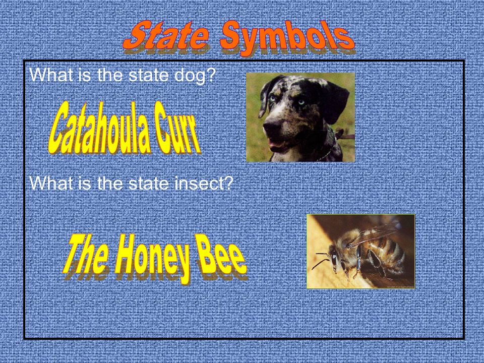 What does the state flag look like? What is the state song?