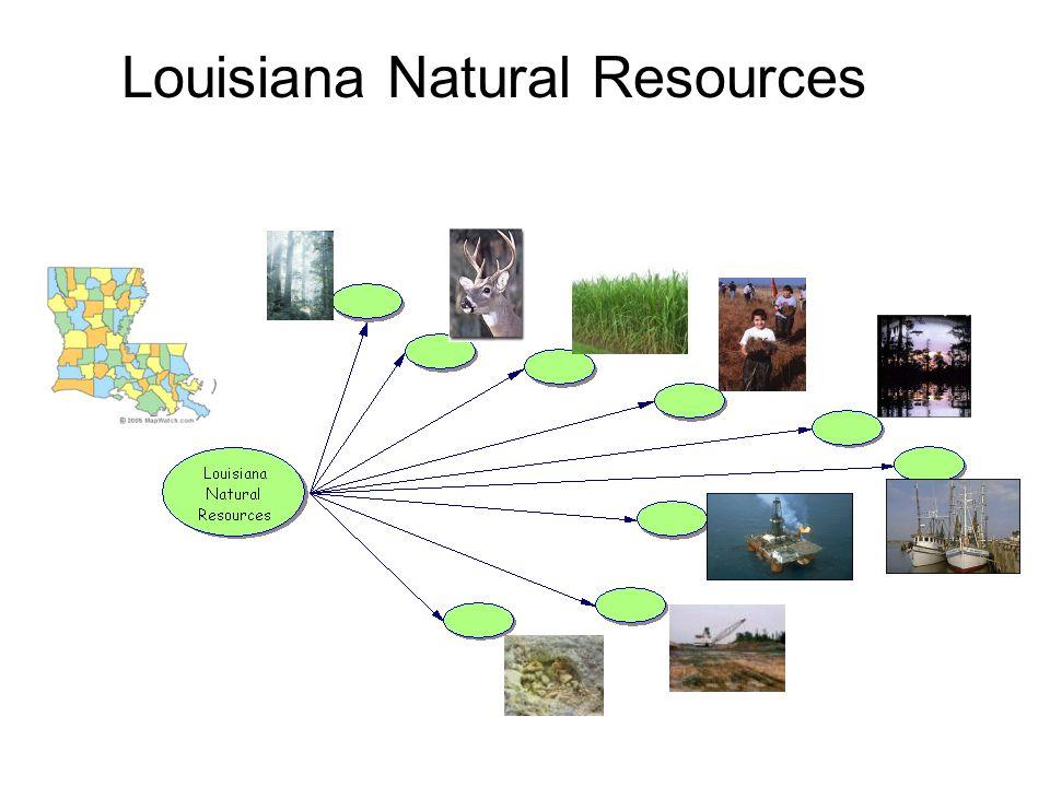 Louisiana Natural Resources
