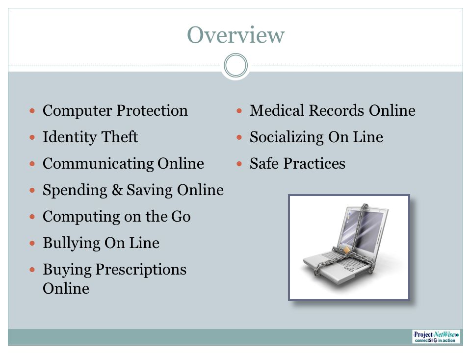 Overview Computer Protection Identity Theft Communicating Online Spending & Saving Online Computing on the Go Bullying On Line Buying Prescriptions Online Medical Records Online Socializing On Line Safe Practices