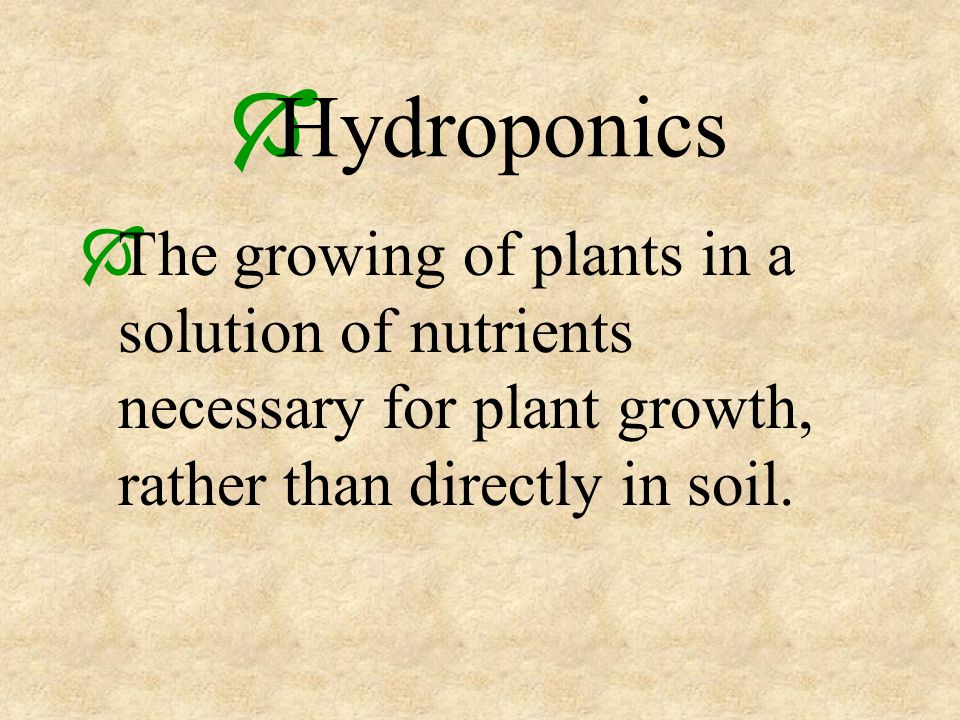 The growing of plants in a solution of nutrients necessary for plant growth, rather than directly in soil.