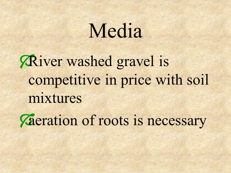 Media River washed gravel is competitive in price with soil mixtures aeration of roots is necessary