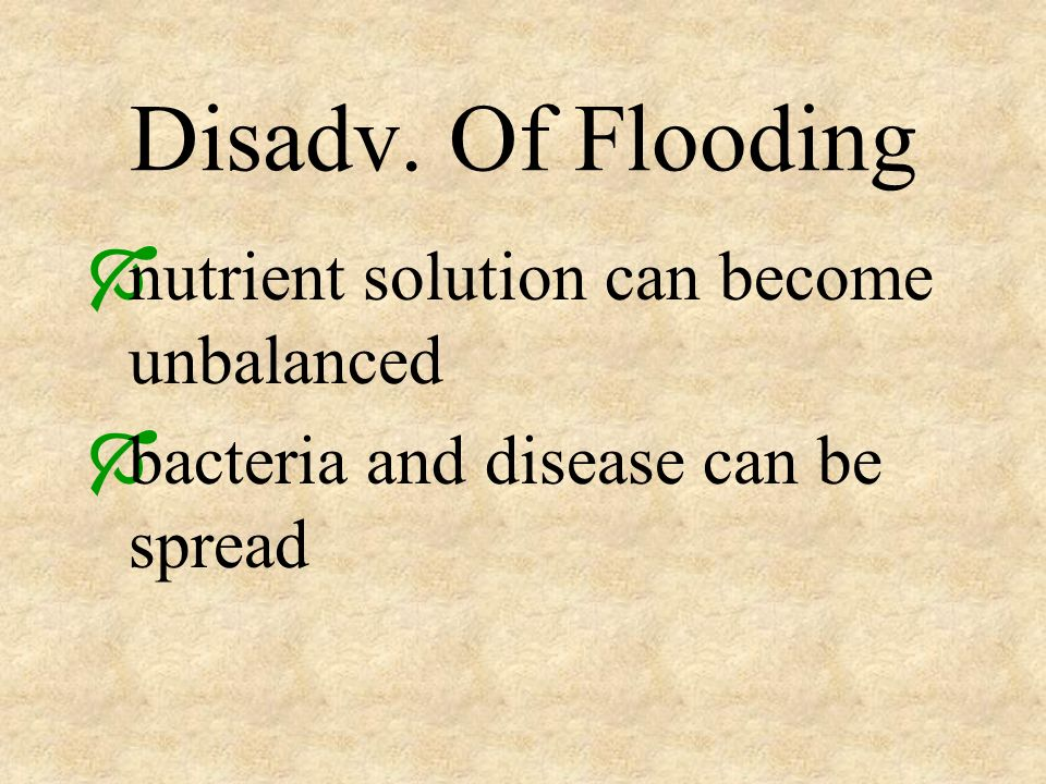 Disadv. Of Flooding nutrient solution can become unbalanced bacteria and disease can be spread