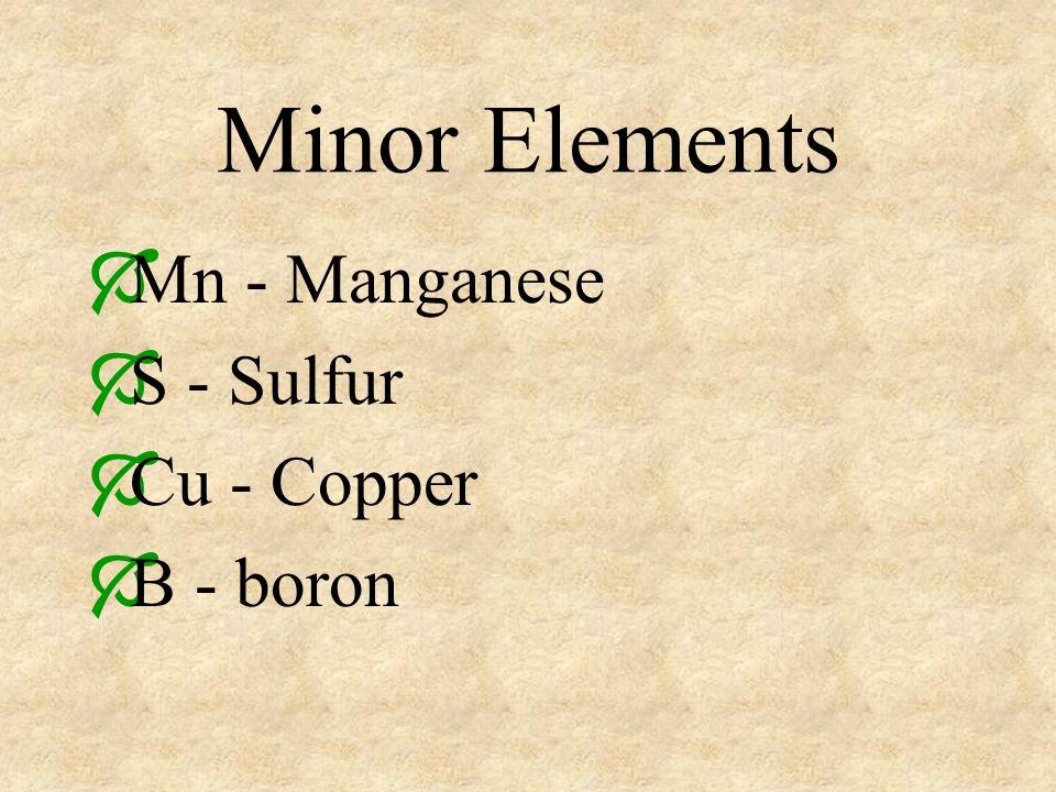 Minor Elements Mn - Manganese S - Sulfur Cu - Copper B - boron