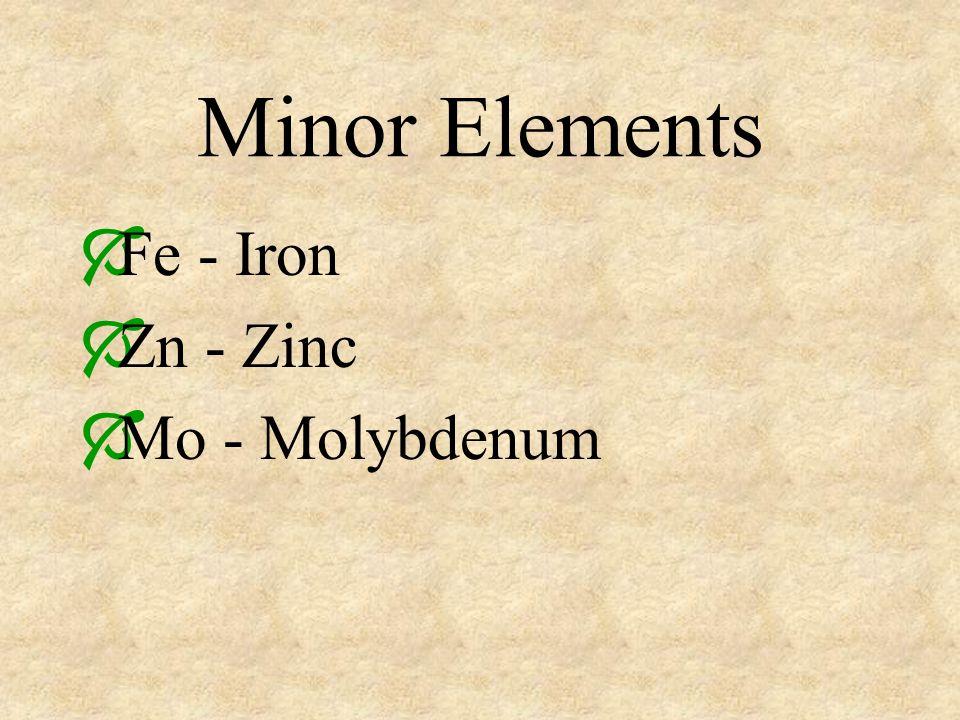 Minor Elements Fe - Iron Zn - Zinc Mo - Molybdenum