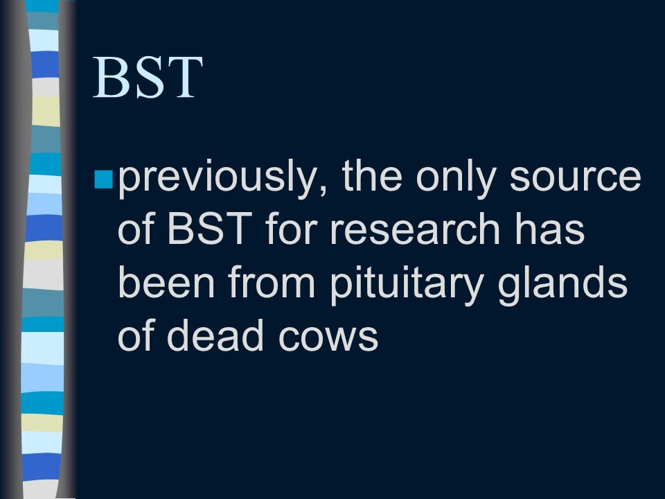 nsnsmall amounts of BST are produced naturally in the cow by the pituitary gland