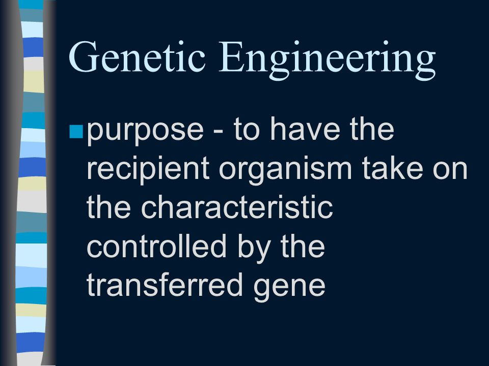 nininvolves taking a tiny bit of DNA containing the desired gene from one organism and splicing it into the DNA strand of another organism