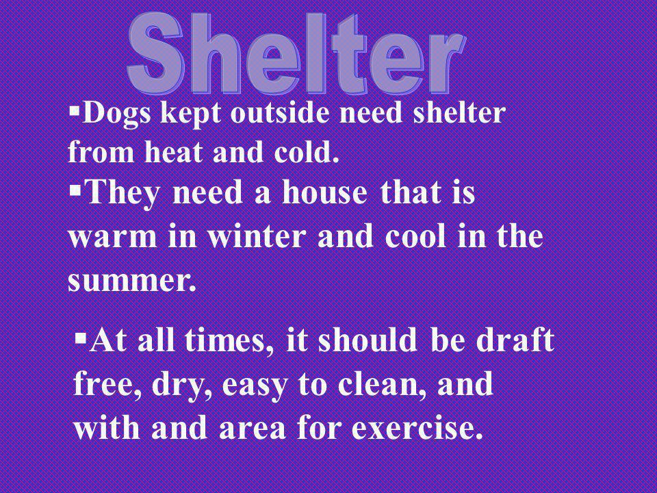 Dogs kept outside need shelter from heat and cold. They need a house that is warm in winter and cool in the summer. At all times, it should be draft f