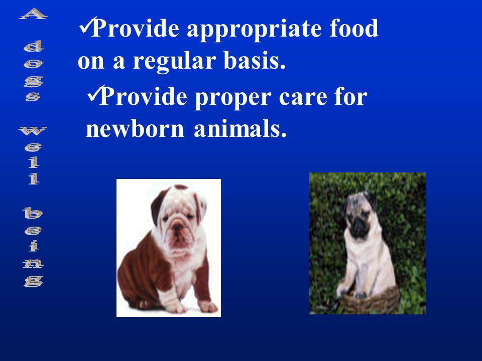 Provide appropriate food on a regular basis. Provide proper care for newborn animals.