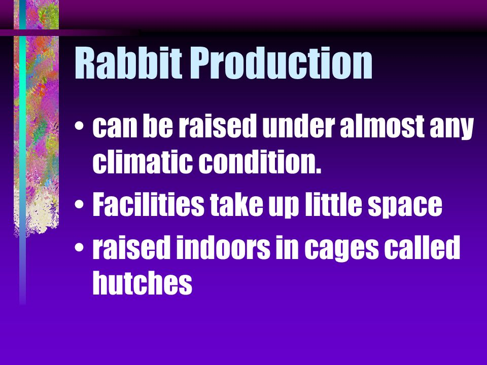 American Rabbit Breeders Assn (ARBA) registers and promotes all breeds of purebred rabbits grown in this country.